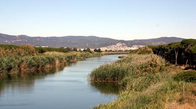 Viladecans reclamarà a Aena assumir la gestió de la franja litoral del municipi