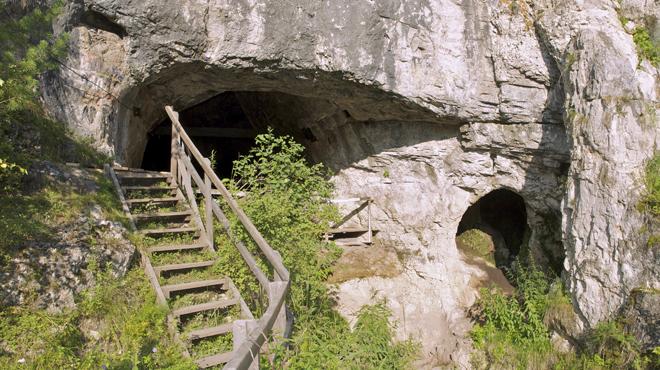 Encuentran por primera vez secuencias genéticas de sapiens en cromosomas de neandertales de Siberia.