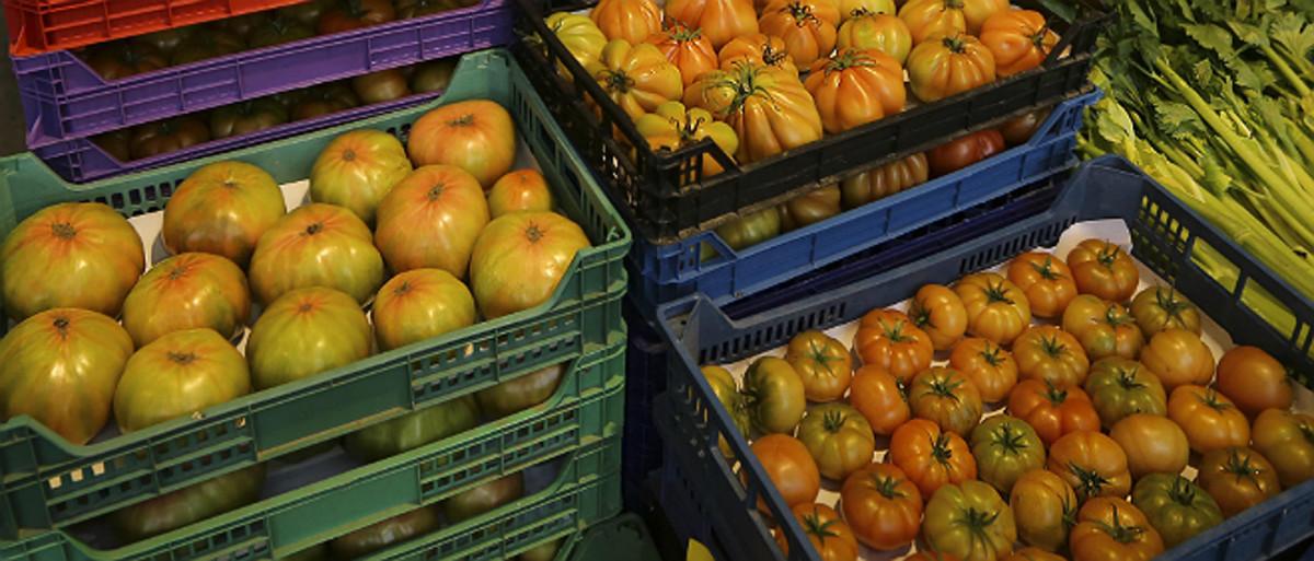 El mal temps eleva el preu de les verdures fins al 120%