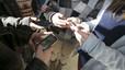 Expulsats d'un col·legi de Cassà tres alumnes de 9 anys per assetjar un company