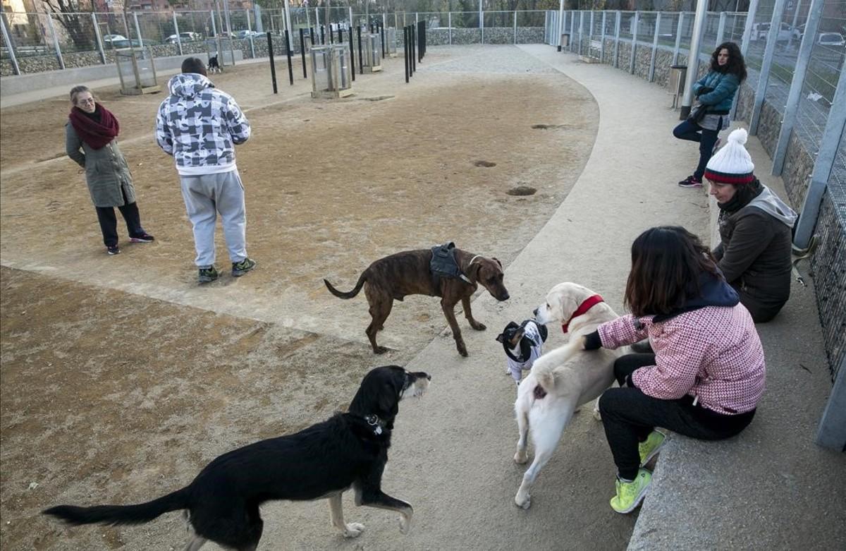 Vecinos con sus perros en la zona de recreo canina de Nou Barris.