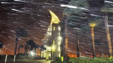 Els arbres es bressolen per les fortes pluges i el vent ocasionats per l'huracà 'Matthew', a cap Canaveral.