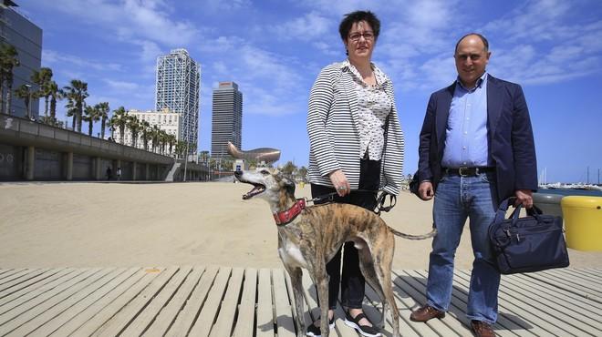 """""""Anar amb el gos a la platja és una conquista de llibertat"""""""