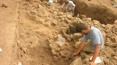 L'agricultura va donar els seus primers passos a Síria fa 10.500 anys