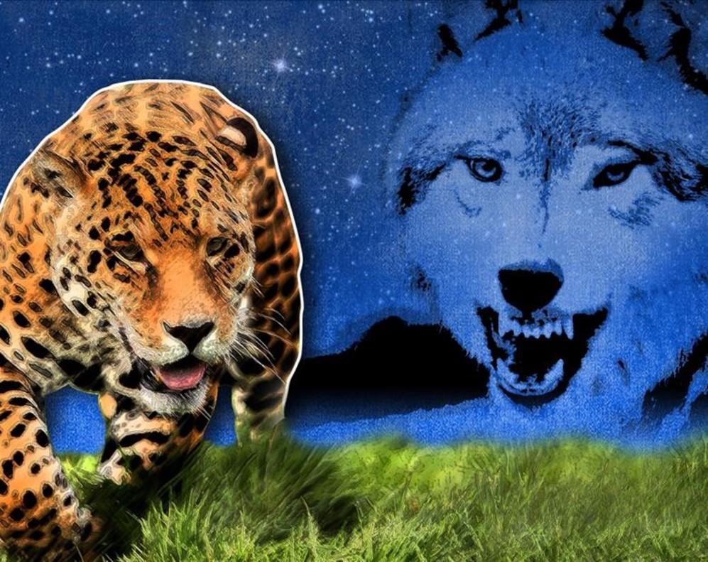Está Muy Lejos El Horizonte Por Jorge Wagensberg: Un Lobo En El Amazonas