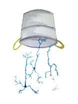 ¿Por qué ha triunfado el 'Ice Bucket Challenge'?
