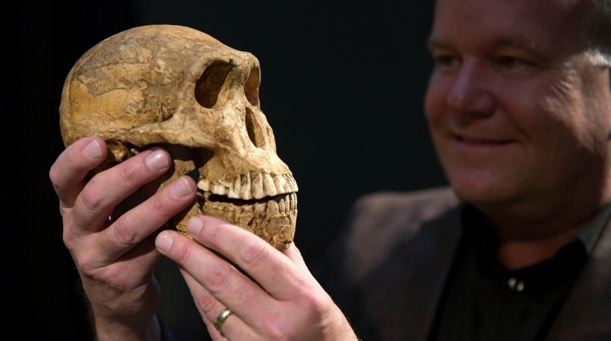 amadridejos38356427 professor lee berger holds a cast of the new homo naledi sku170509190841