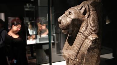 D'animals i déus, al Museu Egipci