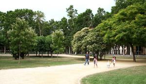 Un parque de Cornellà.