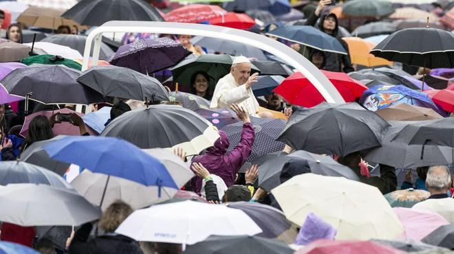 """El papa Francesc: """"Hi ha qui sent compassió per animals, però s'oblida del veí"""""""