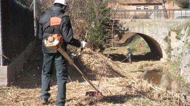 Operario, contratado con los planes deocupación del AMB,desbrozando un arroyo en Begues.