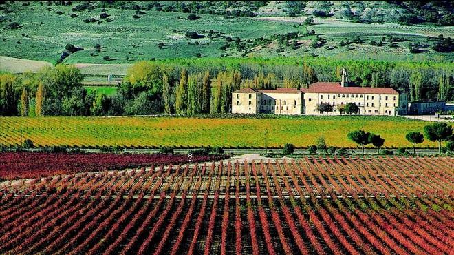 Abadia Retuerta LeDomaine, el millor hotel d'Espanya per TripAdvisor
