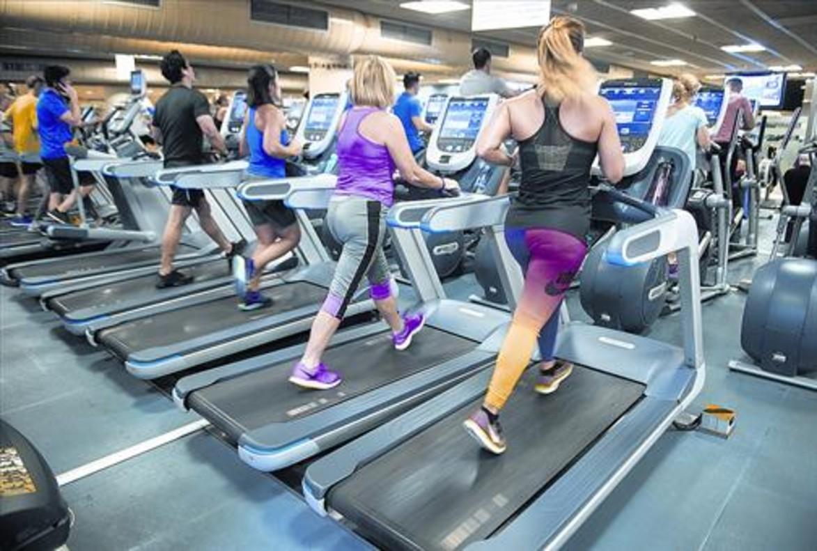 Mitos y verdades del 39 fitness 39 for Gimnasio dir
