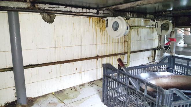 Inspeccions de la Guàrdia Urbanade Barcelona intervenen més de 2.500 quilos d'aliments en mal estat.
