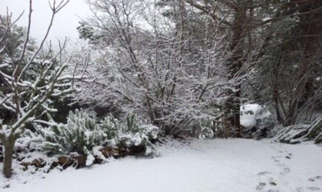 Despertar blanco en el Montseny.