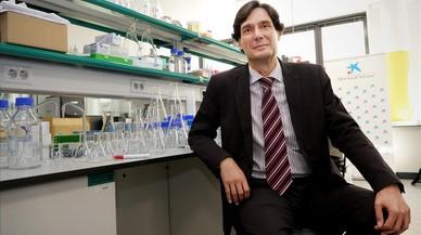 Manuel Serrano traslada de Madrid a Barcelona sus investigaciones sobre células madre