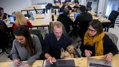 Wallapop i Ironhack busquen programadores