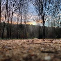 #EPmomentosdefelicidad: Mándanos tus fotos del otoño