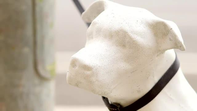Barcelona instala estatuas de perros abandonados para fomentar la adopción
