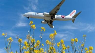 Un avi�n de Air Europa se dispone a aterrizar en El Prat.