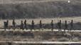 Corea del Nord llança dos míssils com a resposta a unes maniobres entre Corea del Sud i els EUA