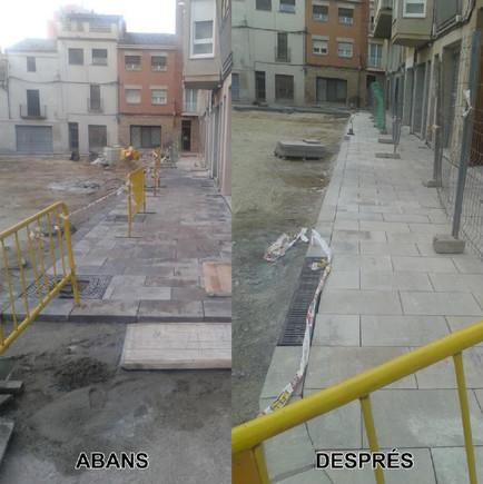 ¿Hacia un municipio sin árboles en Vilanova del Camí?