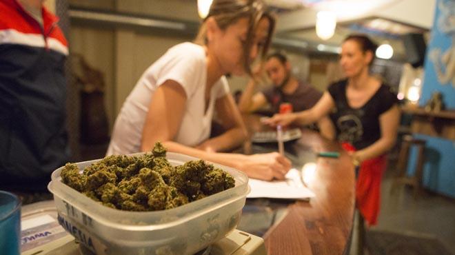 La majoria dels joves aposten per una legalització controlada del cànnabis