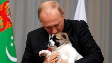 El perrito que enterneció a Putin