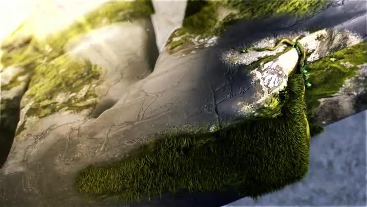 Discovery Max: naturaleza