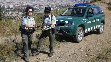 Denunciada una dona com a responsable de 20 petits incendis a l'Ametlla