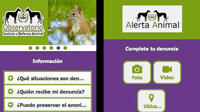 'Alerta animal', primera 'app' espanyola per denunciar el maltractament animal