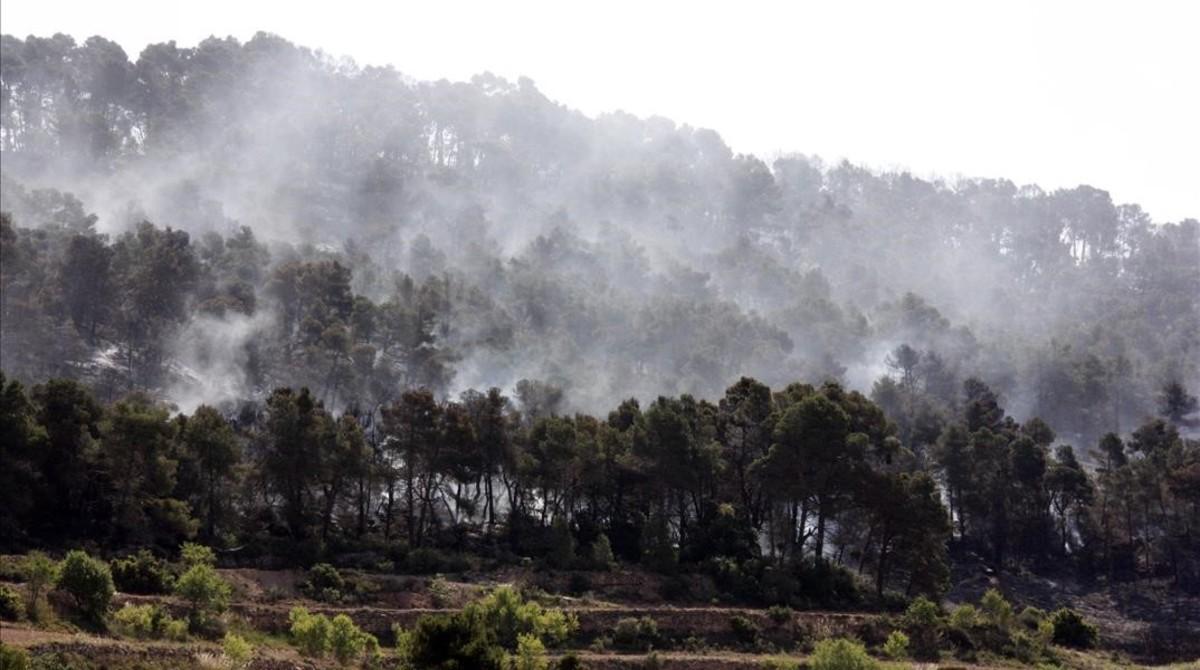 Incendio forestal en Rocallaura.