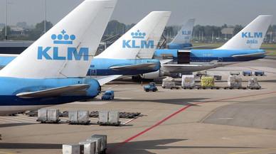 Un perro reclama 400 euros a la aerolínea KLM por un retraso de su vuelo