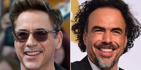 Robert Downey Jr y Alejandro Gonz�lez I��rritu.
