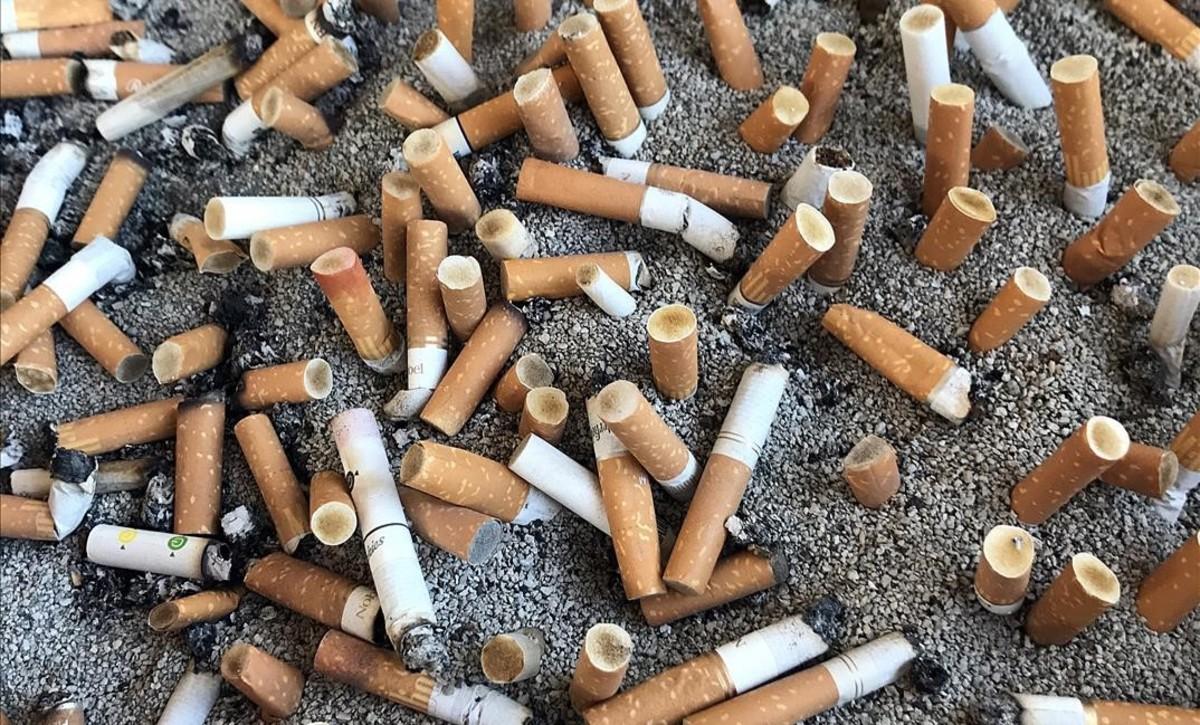 zentauroepp38664923 tabaco170529171626