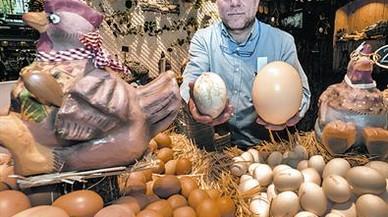 Cuestión de huevos