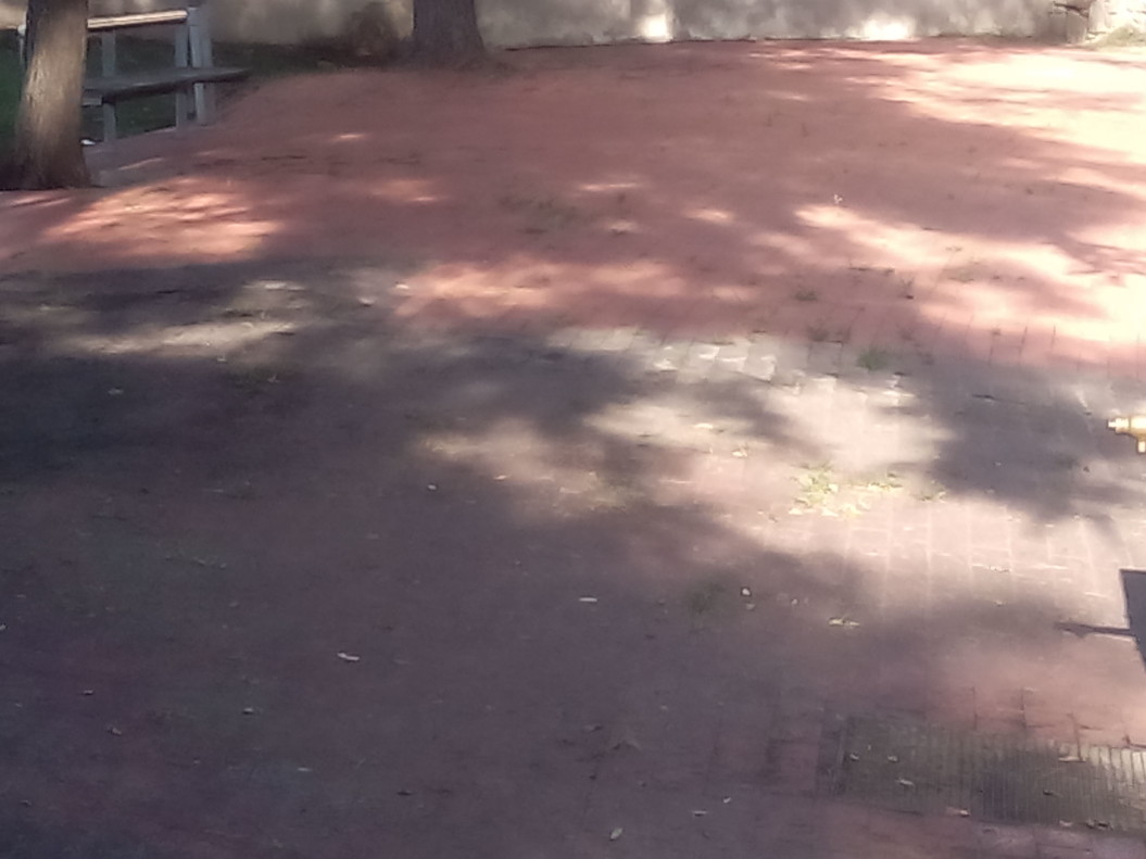 Limpieza en el parque de Tecla Sala