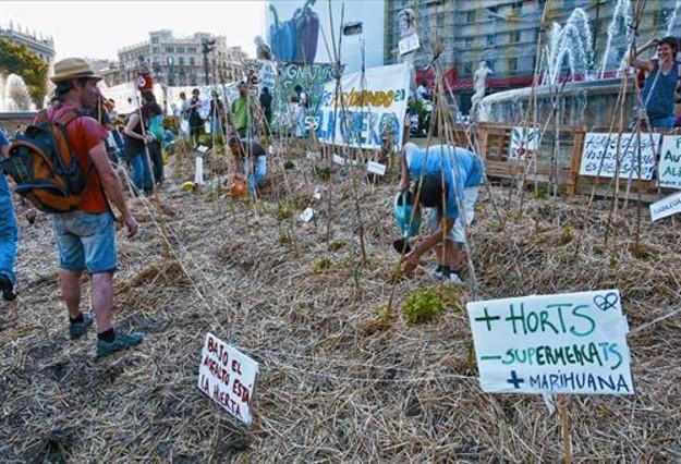 España: indignados, dispersión y marihuana