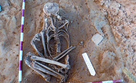 Primer esqueleto, con las piernas en posición forzada, encontrado en el enterramiento de La Sagrera.