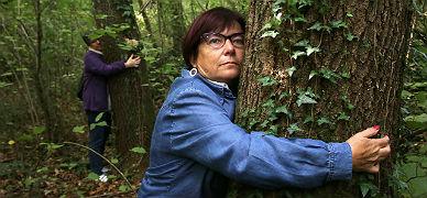 Participantes en el ensayo cl�nico pasean por el bosque y se abrazan a los �rboles.
