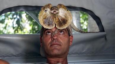 Frank Cuesta, en un momento de su programa, con uno de los exóticos animales con los que legusta jugar ante las cámaras.