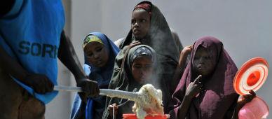 La FAO fracasa en el reto de reducir la cifra de hambrientos a la mitad