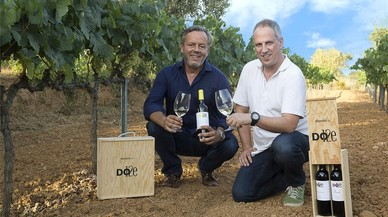 Un vino por cada DO catalana