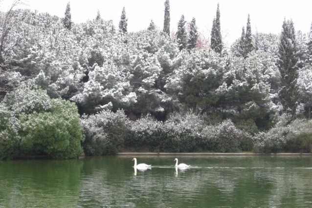 Un estanque en Sabadell