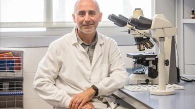 """Joaquim Segalés: """"No hi ha hagut mai un cas en humans amb l'actual virus aviari"""""""