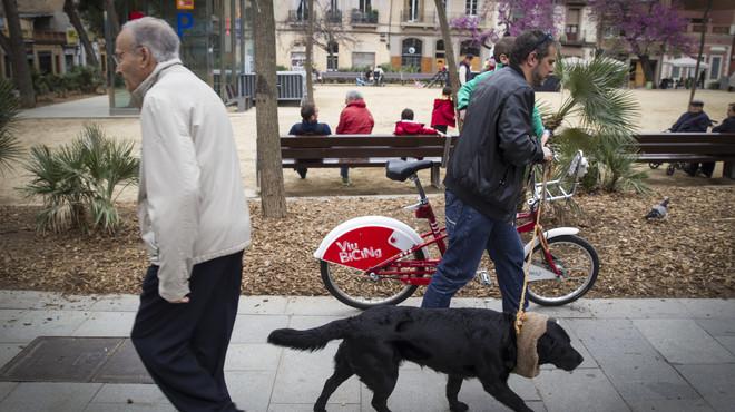 Veïns de Gràcia denuncien la mort en cadena de gossos enverinats al carrer