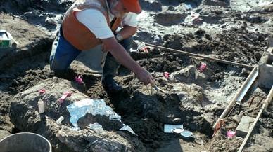 Un investigador del Museo de Historia Natural de San Diego, en EEUU, señalaunos fragmentos aún enterrados del mastodonte.