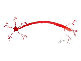 Neurocápsula de Navidad