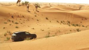 Pruebas del nuevo Porsche Cayenne