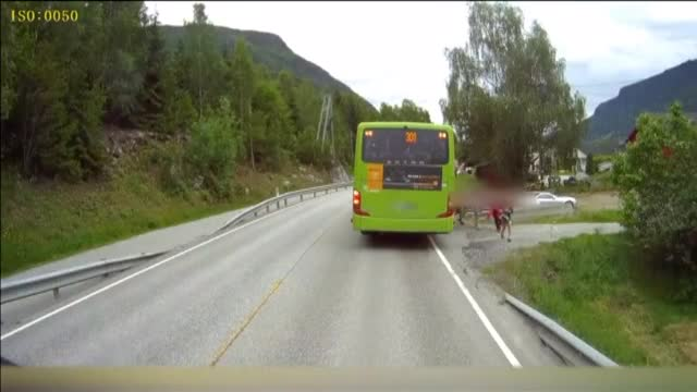 Los reflejos del conductor evitaron que se convirtiera en una tragedia